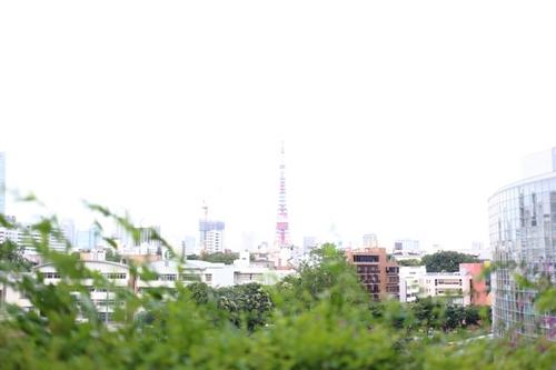 IMG_4778.JPG